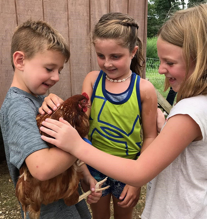 Making a new farm friend at the chicken coop at the Rockland Farm Alliance Agricultural Education Program in New City last week are, from left: Aidan Smith, Ellie McCluskey and Ella Smith.